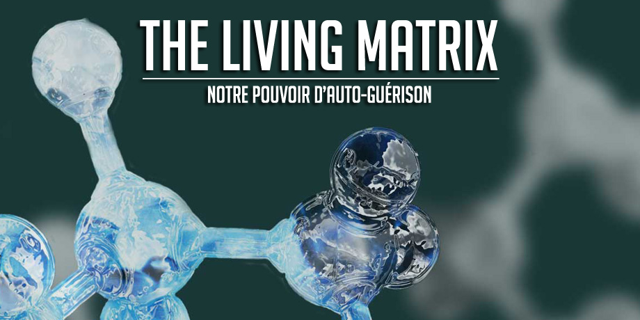 The_Living_Matrix_Slider_Les_Insoumis